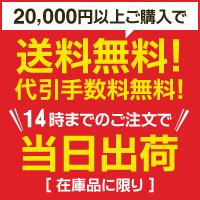 当日配送・2万円以上で送料無料